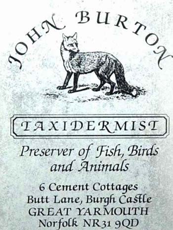 johnburtontaxidermist.jpg
