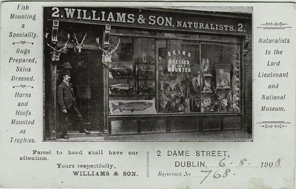 williamsshopfront.jpg